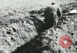 Image of German troops in trenches and foxholes Tunisia North Africa, 1942, second 9 stock footage video 65675062709