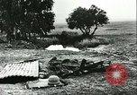 Image of German troops in trenches and foxholes Tunisia North Africa, 1942, second 40 stock footage video 65675062709