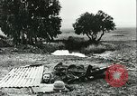 Image of German troops in trenches and foxholes Tunisia North Africa, 1942, second 42 stock footage video 65675062709