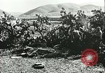 Image of German troops in trenches and foxholes Tunisia North Africa, 1942, second 58 stock footage video 65675062709