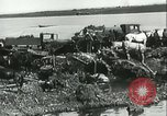 Image of German soldiers at the River Don Russia, 1942, second 37 stock footage video 65675062716