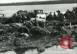 Image of German soldiers at the River Don Russia, 1942, second 38 stock footage video 65675062716