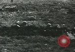 Image of German soldiers Russia, 1942, second 59 stock footage video 65675062718