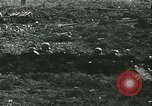 Image of German soldiers Russia, 1942, second 60 stock footage video 65675062718