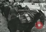 Image of United States troops Italy, 1944, second 38 stock footage video 65675062728