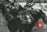 Image of United States troops Italy, 1944, second 39 stock footage video 65675062728