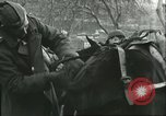 Image of United States troops Italy, 1944, second 48 stock footage video 65675062728
