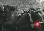 Image of United States troops Italy, 1944, second 49 stock footage video 65675062728