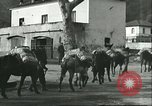Image of United States troops Italy, 1944, second 59 stock footage video 65675062728
