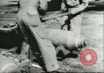 Image of 8th Army Air Forces European Theater, 1944, second 51 stock footage video 65675062729