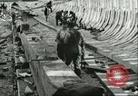 Image of United States Merchant Marines in World War 1 United States USA, 1918, second 50 stock footage video 65675062736