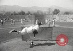 Image of Chicago White Sox Spring Training Florida United States USA, 1950, second 35 stock footage video 65675062755
