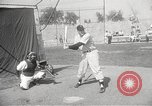 Image of Chicago White Sox Spring Training Florida United States USA, 1950, second 45 stock footage video 65675062755
