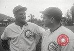 Image of Chicago Cubs baseball Spring Training Catalina Island California United States USA, 1950, second 17 stock footage video 65675062756