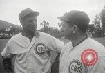 Image of Chicago Cubs baseball Spring Training Catalina Island California United States USA, 1950, second 18 stock footage video 65675062756