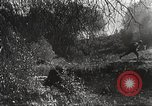 Image of army photographers European Theater, 1944, second 14 stock footage video 65675062791
