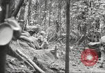 Image of U.S. troops in combat zones watch movies in World War II Pacific theater, 1943, second 37 stock footage video 65675062808