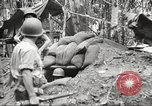 Image of U.S. troops in combat zones watch movies in World War II Pacific theater, 1943, second 42 stock footage video 65675062808