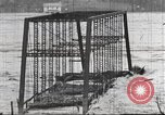Image of damage from flood Washington DC USA, 1936, second 12 stock footage video 65675062897