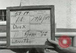 Image of 287th Military Police Company Berlin Germany, 1957, second 4 stock footage video 65675062913