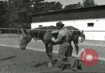 Image of 287th Military Police Company Berlin Germany, 1957, second 8 stock footage video 65675062914