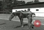 Image of 287th Military Police Company Berlin Germany, 1957, second 16 stock footage video 65675062914