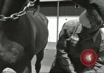 Image of 287th Military Police Company Berlin Germany, 1957, second 17 stock footage video 65675062914