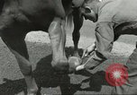 Image of 287th Military Police Company Berlin Germany, 1957, second 31 stock footage video 65675062914