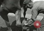 Image of 287th Military Police Company Berlin Germany, 1957, second 36 stock footage video 65675062914