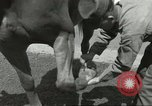 Image of 287th Military Police Company Berlin Germany, 1957, second 37 stock footage video 65675062914