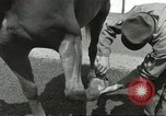 Image of 287th Military Police Company Berlin Germany, 1957, second 38 stock footage video 65675062914