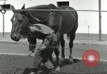Image of 287th Military Police Company Berlin Germany, 1957, second 59 stock footage video 65675062914