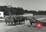 Image of 287th Military Police Company Berlin Germany, 1957, second 9 stock footage video 65675062915