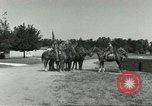Image of 287th Military Police Company Berlin Germany, 1957, second 9 stock footage video 65675062916