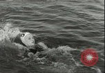 Image of Junior swimming championship Holland Netherlands, 1955, second 27 stock footage video 65675062936