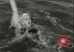 Image of Junior swimming championship Holland Netherlands, 1955, second 30 stock footage video 65675062936