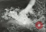 Image of Junior swimming championship Holland Netherlands, 1955, second 32 stock footage video 65675062936
