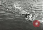 Image of Junior swimming championship Holland Netherlands, 1955, second 38 stock footage video 65675062936