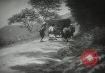 Image of Japanese children Japan, 1939, second 29 stock footage video 65675062942
