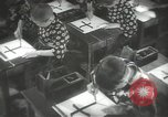Image of Japanese children at summer camp Japan, 1939, second 37 stock footage video 65675062943
