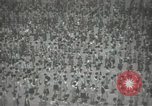 Image of Japanese children bow at shrine on the way to school Japan, 1939, second 25 stock footage video 65675062944