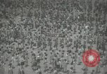 Image of Japanese children bow at shrine on the way to school Japan, 1939, second 28 stock footage video 65675062944