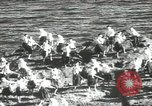 Image of Japanese men Japan, 1939, second 49 stock footage video 65675062953