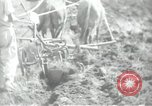 Image of Palestinian civilians Palestine, 1938, second 55 stock footage video 65675062958