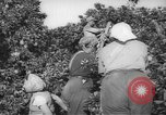 Image of Palestinian civilians Rehovot Palestine, 1938, second 7 stock footage video 65675062960