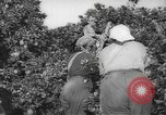 Image of Palestinian civilians Rehovot Palestine, 1938, second 8 stock footage video 65675062960