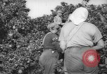 Image of Palestinian civilians Rehovot Palestine, 1938, second 14 stock footage video 65675062960
