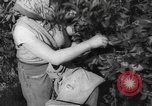 Image of Palestinian civilians Rehovot Palestine, 1938, second 20 stock footage video 65675062960