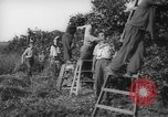Image of Palestinian civilians Rehovot Palestine, 1938, second 24 stock footage video 65675062960