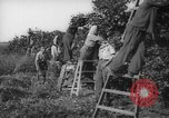 Image of Palestinian civilians Rehovot Palestine, 1938, second 25 stock footage video 65675062960